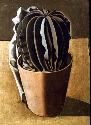 'Cactus' by Giorgio Morandi (1917). I like the way this looks quite realistic.