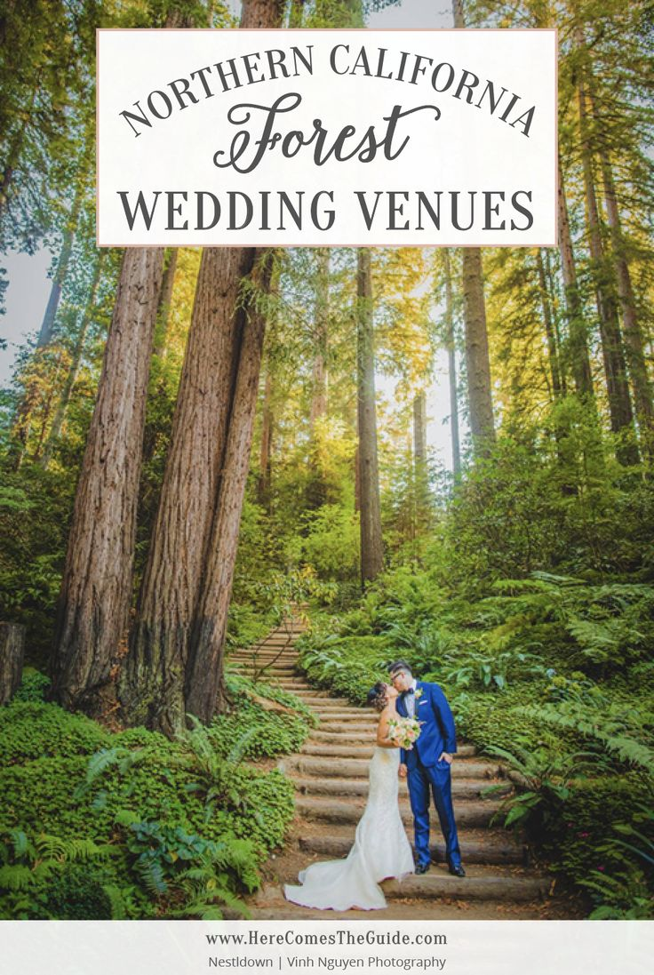 beautiful wedding places in northern california%0A Find forest wedding venues in Northern California with redwoods  oaks  and  more  See prices  photos  capacity and detailed info for forest wedding  venues