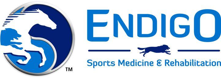 Dr. Tammy Johnson, DVM integrative vet at Endigo Sports Medicine & Rehabilitation in Jupiter, Florida http://www.rehabdvm.com/home.html http://www.bestcatanddognutrition.com/roger-biduk/list-of-over-900-u-s-holistic-and-integrative-veterinarians/ Roger Biduk
