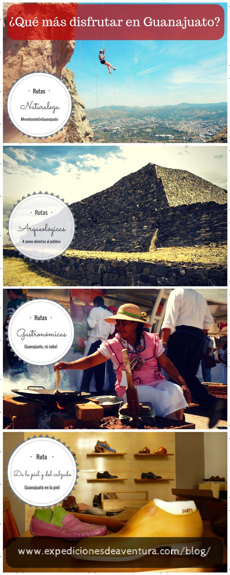 18 best Infografías Turismo images on Pinterest | Turismo ...
