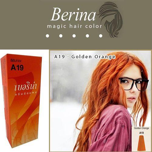 Brand New Berina Permanent Hair Dye Unisex Cream A19 Golden Orange ...