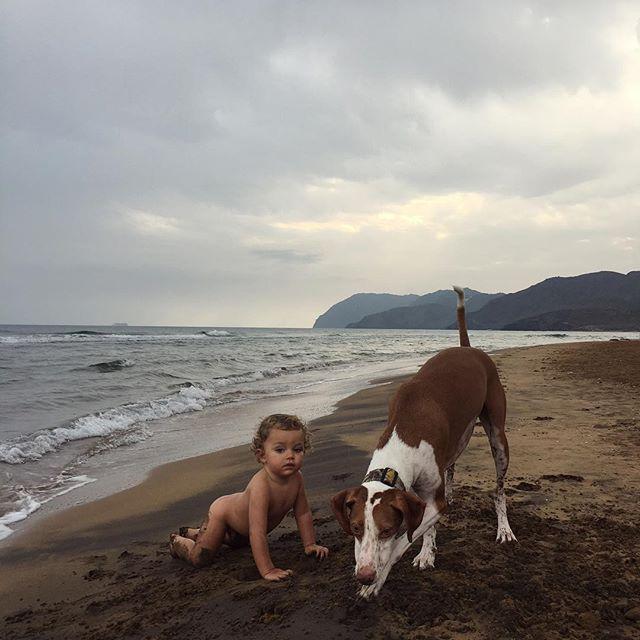 Buscando tesoros #bestfriends #love #summertime #life #dog #podenco #adopta #truelove #candichildhood