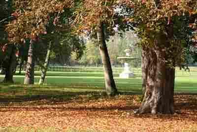 """Parc du Château d'Ancy le Franc: fontaine S-O-  2) Les Jardins à la Française: En 1684, lorsque le marquis de Louvois acquit le château, il entreprit de lui donner le caractère d'une demeure """"Grand Siècle"""". Il ordonna la démolition des vestiges du mur médiéval, au N-O du château, de façon à libérer l'espace pour de vastes communs disposés autour de 2 cours."""