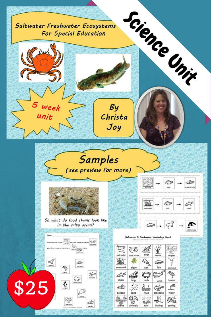 Ecosystems Unit for Special Education.  This 382 page unit was developed  specifically for students with special learning needs, especially autism. There is a carefully planned engaging learning experience that students will complete over the course of the 5 weeks. Each week has its own detailed lesson plans, guiding questions, power points, printables, and assessments. Download at…