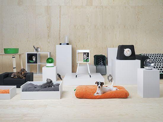 Looks like IKEA has gone to the dogs.