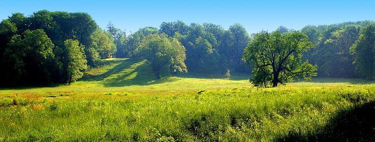 Park Mużakowski Łęknica