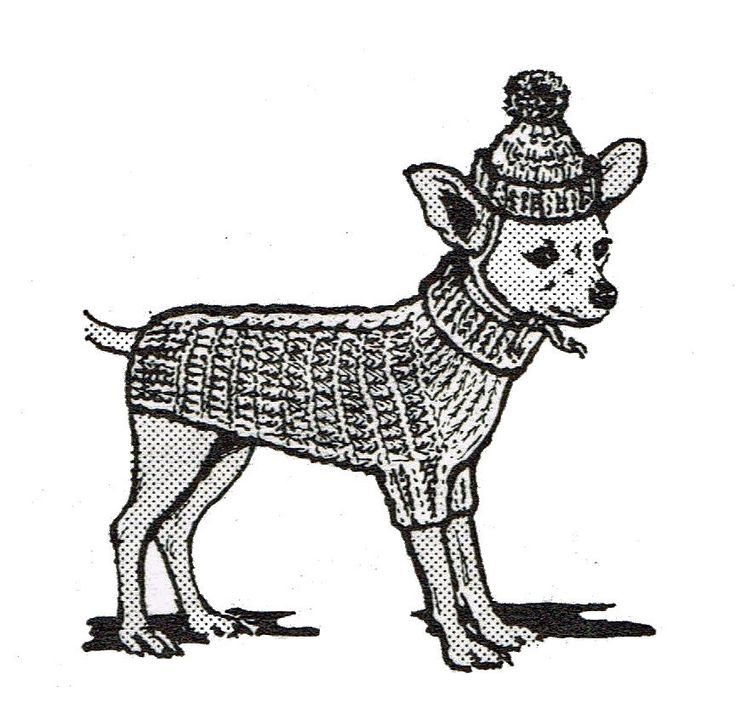 Modern Chihuahua Crochet Pattern Composition Sewing Ideas