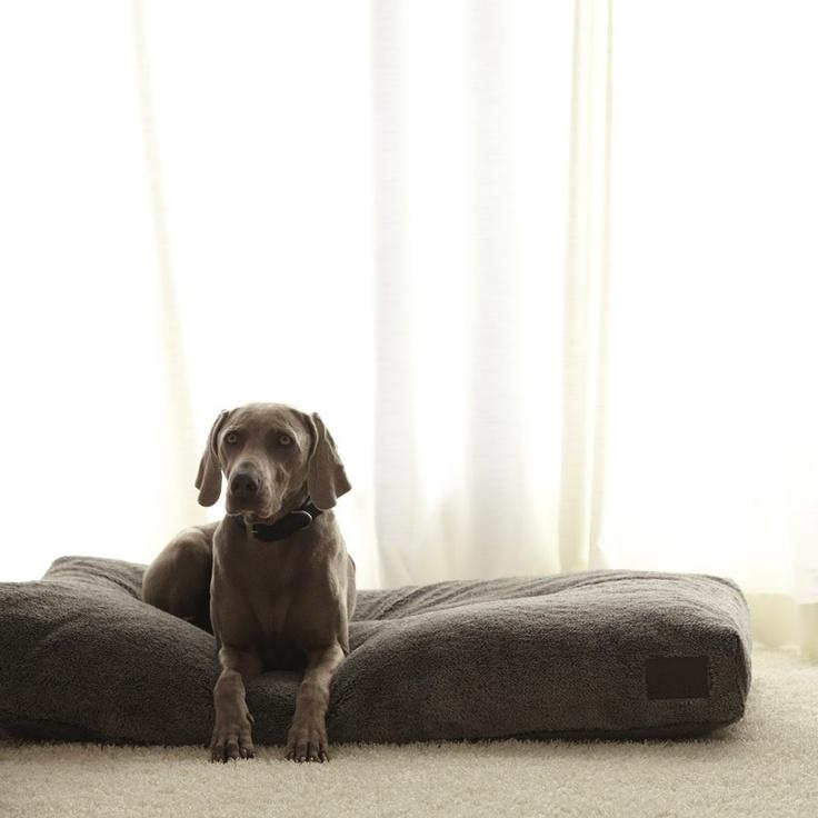 Miacara Dog Bed Australia