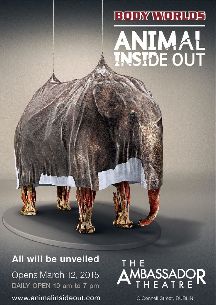 BodyWorlds - Animal Inside Out The Ambassador Theatre, Dublin Opens 12 March 2015
