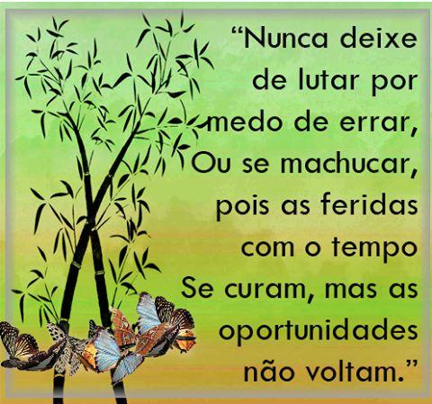 Nunca deixe de lutar por medo de errar ou de se magoar, pois as feridas curam-se com o tempo mas as oportunidades não voltam Visita -->> http://blog.carvalhohelder.com/