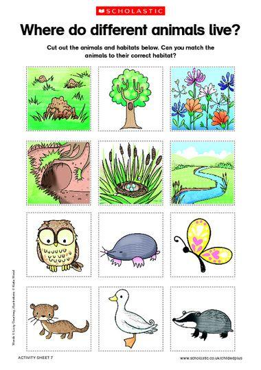 Animals and habitats - free printable