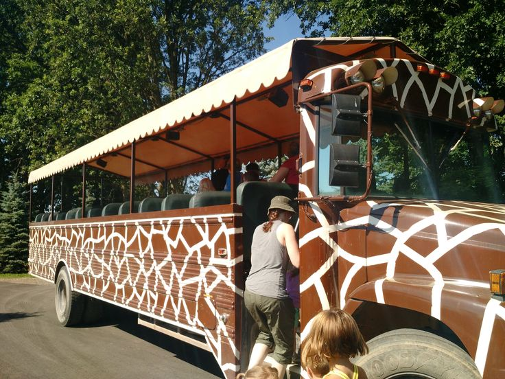 Boulder Ridge Safari Bus