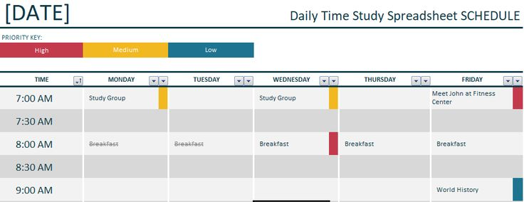 he daily time study spreadsheet allows you to plan your whole day. You can view all your hourly, daily and weekly activities. Easily organize your day by the hour and you can also add your important notes. You are able to plan your events and meetings and set reminders for important tasks. You can also share this spreadsheet with your co-workers which will help them to know your schedule.