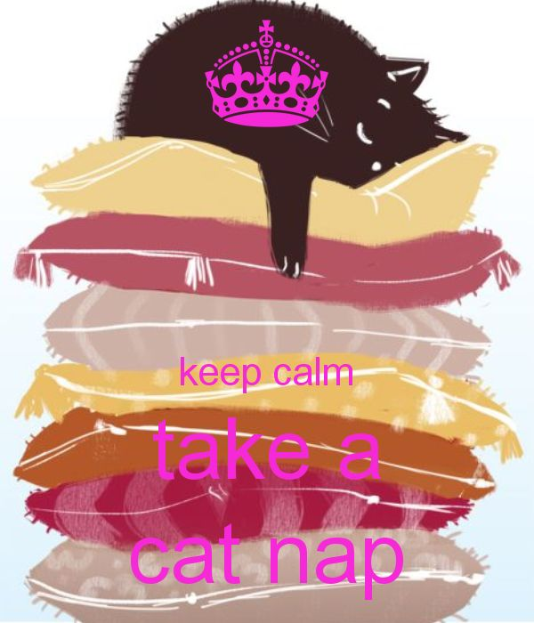 keep calm and take a cat nap