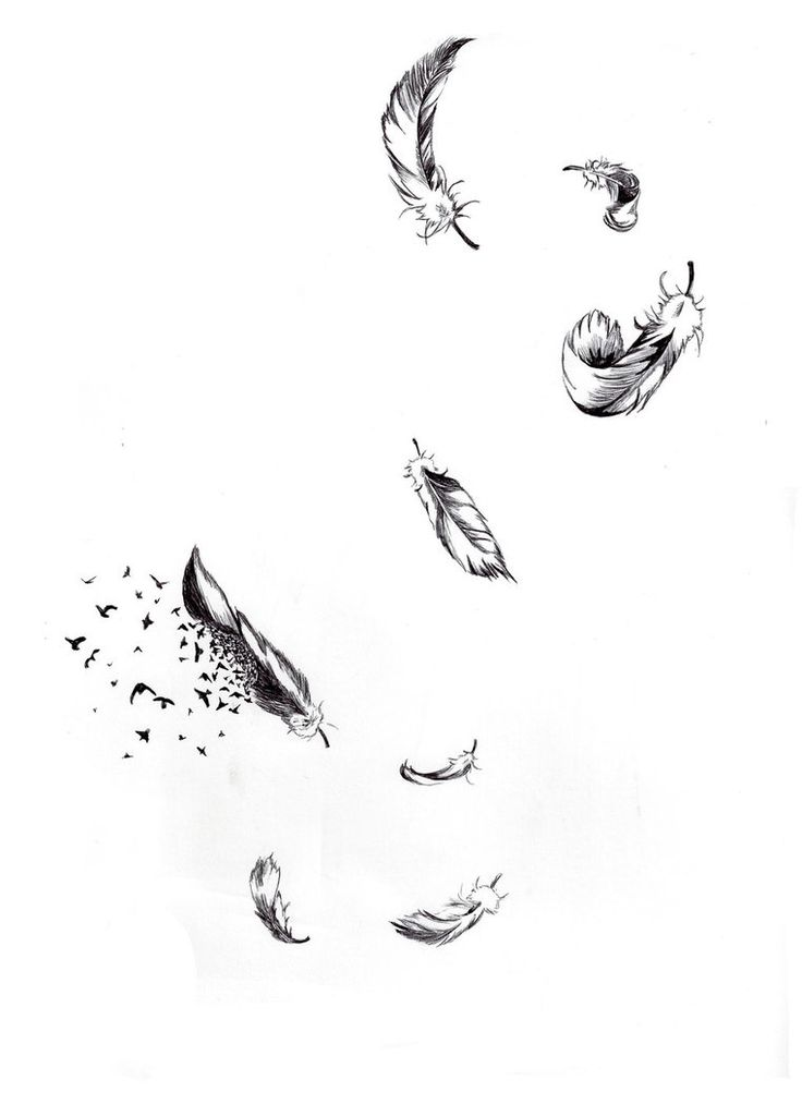 Falling feathers by n00b-wing | Ink Inspiration ...