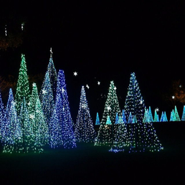 Garden Of Lights Green Bay Wi Entrancing 87 Best Christmas Lights Images On Pinterest  Christmas Lights Inspiration