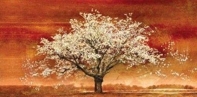 ΕΛΑΙΟΤΥΠΙΑ ALMOND TREE II