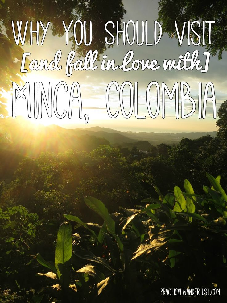 Why you should visit the tiny, off the beaten path mountain town of Minca when you travel to Colombia! The perfect destination for budget backpackers.