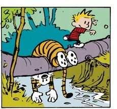 Calvin and Hobbes, spending the day with your best friend...