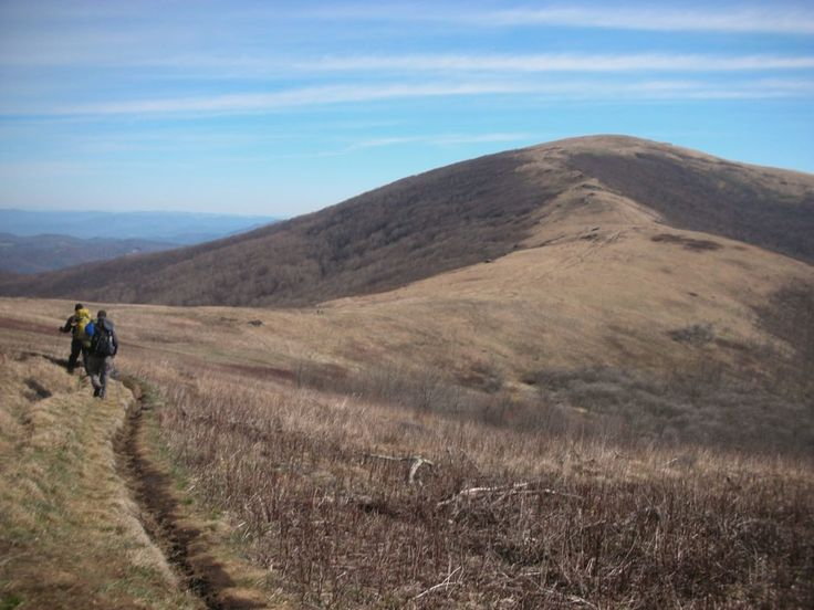 Section hiking the Appalachian Trail in North Caroline - Tennessee #backpacking