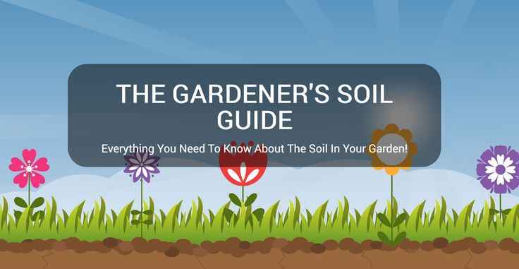 Not all garden soils are created equal you see: some have more clay; others have coarse sand particles; there are garden soils with a lot of silt and the list goes on. Each of these soil types have specific needs and challenges that must be addressed if you want to garden successfully.