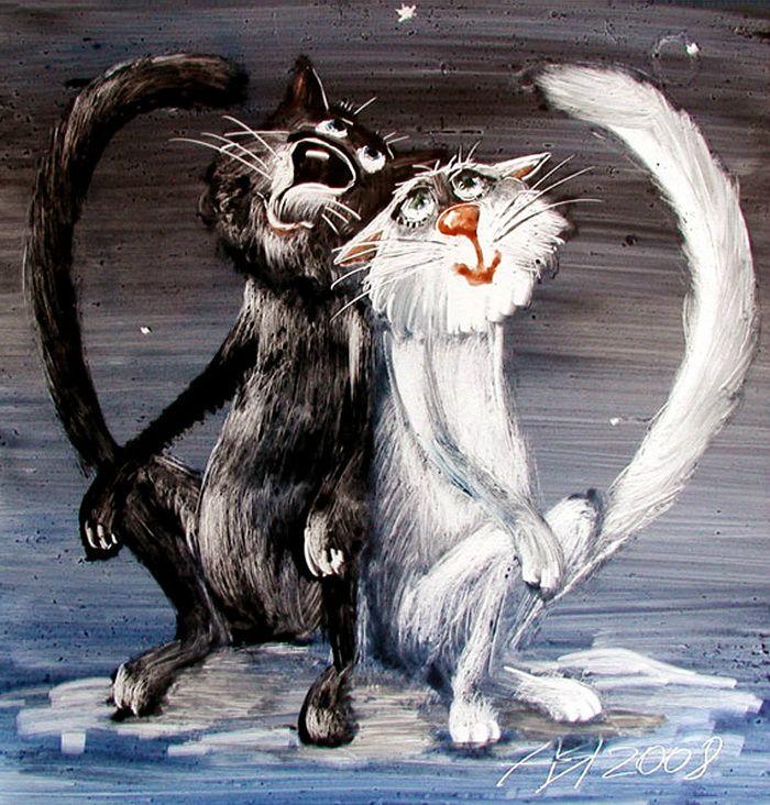cats by A Yaryshkin