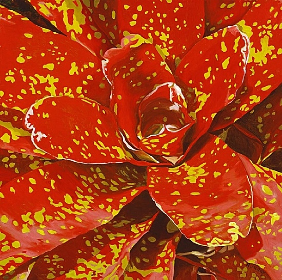 Robin McCoy Paintings