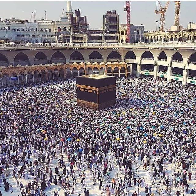 Pin On Islamic Quotes Quran