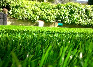 17 meilleures id es propos de gazon synth tique sur pinterest jardins con - Meilleur gazon synthetique ...