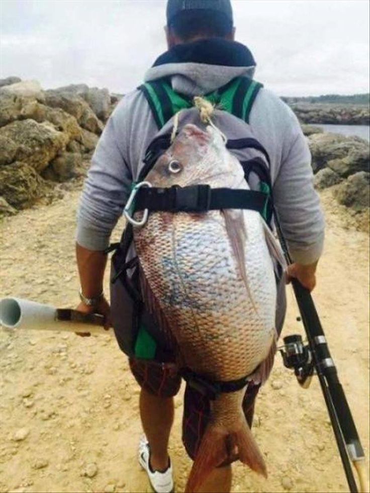 Смешные картинки рыбалки