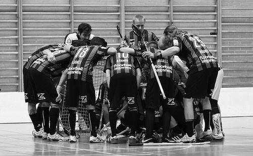Campeonato de España Masculino 2014 #Floorball #FloorballEspaña #AlexandraLunar #XandraLunar