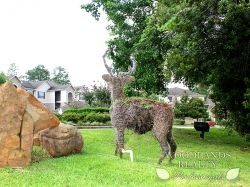 An amazing deer made up from plant roots in the middle of the garden of a high value apartment zone - Gallery - Woodlands Realty Pros