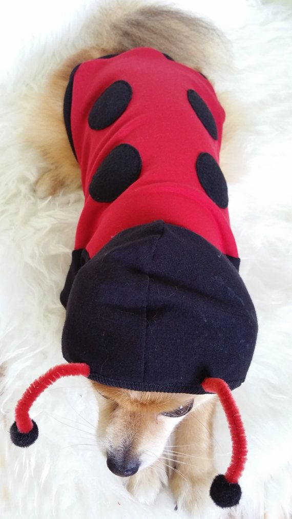 Lady Bug Costume XS4XL Size Handmade Dog by puppydoggyclothes