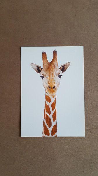 Bilder - Kleine Giraffe Druck A4 - ein Designerstück von Hakuna-Matata-Melly bei DaWanda