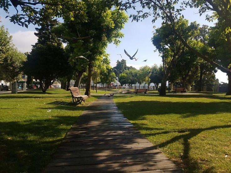 Câmara da Covilhã requalifica Jardim Público - Parque infantil totalmente remodelado, iluminação pública substituída por tecnologia LED e espaço de restauração ampliado.