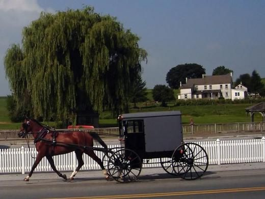Lancaster, PA: Help Travel, Lancaster Pa, Except, North America, Favorite Places, Amish Life, Amish Country, Families, Pennsylvania Amish