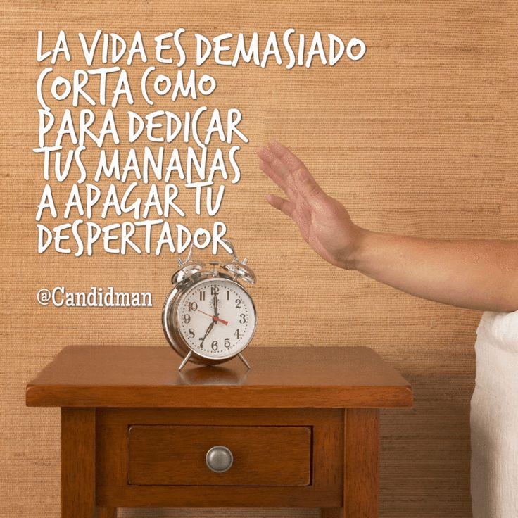 """La #Vida es demasiado corta como para dedicar tus mañanas a apagar tu #Despertador"". @candidman #Frases #Motivacion #BuenDia #Lunes #Mañana #Candidman"