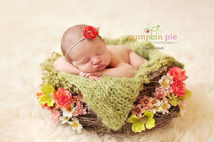 Newborn photography Pinteres • @FaithBird ❥❥❥