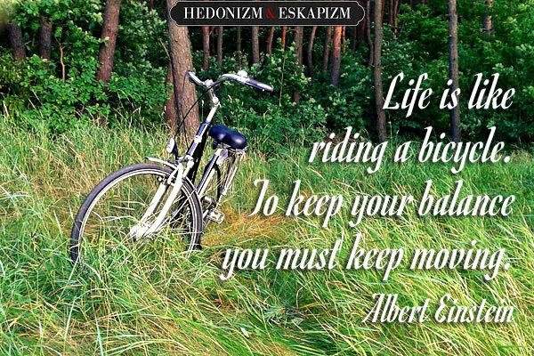 unaweblog.pl  Life is like riding a bicycle. to keep your balance you must keep moving...