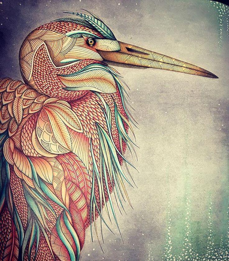 The Color School Millie Marotta Animal Kingdom Crane Bird