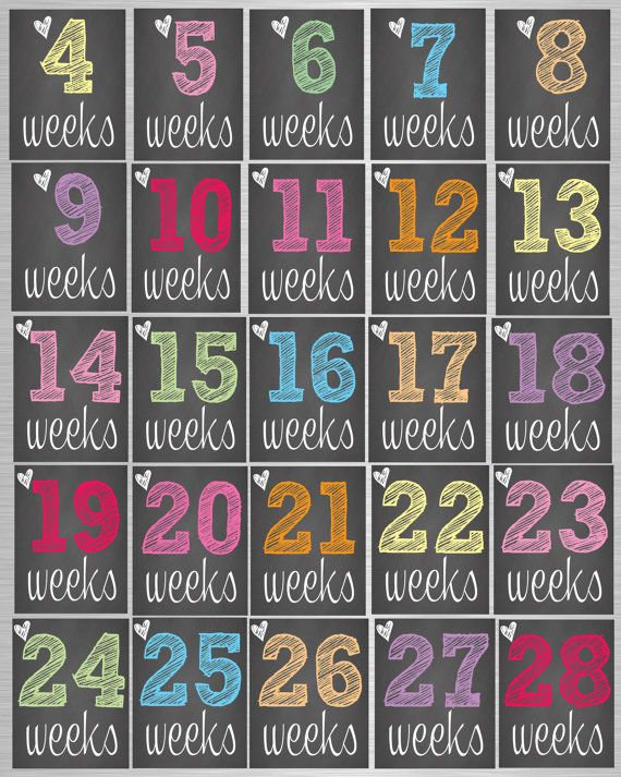 the pregnancy countdown book pdf