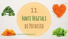 Gli alimenti ricchi di potassio sono utili per integrare questo minerale nella dieta. Ecco le migliori fonti vegetali di potassio per vegani e vegetariani.
