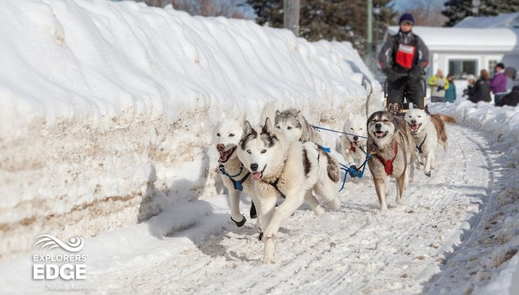 The 2015 Kearney Dog Sled Races, is happening February 7 - 8, 2015