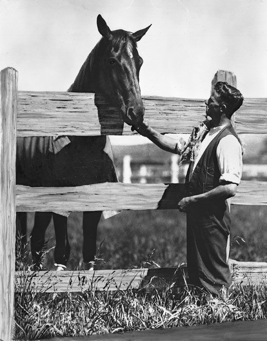 Australian champion Phar Lap arrived in San Francisco on January 15, 1932. He was shipped by steamship to the U.S., en route to Agua Caliente in Mexico, where he was to make his North American racing debut in the March 20 Agua Caliente Handicap, the continent's then-richest race.