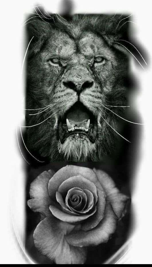 Lion of Judah and Rose, prophetic art.