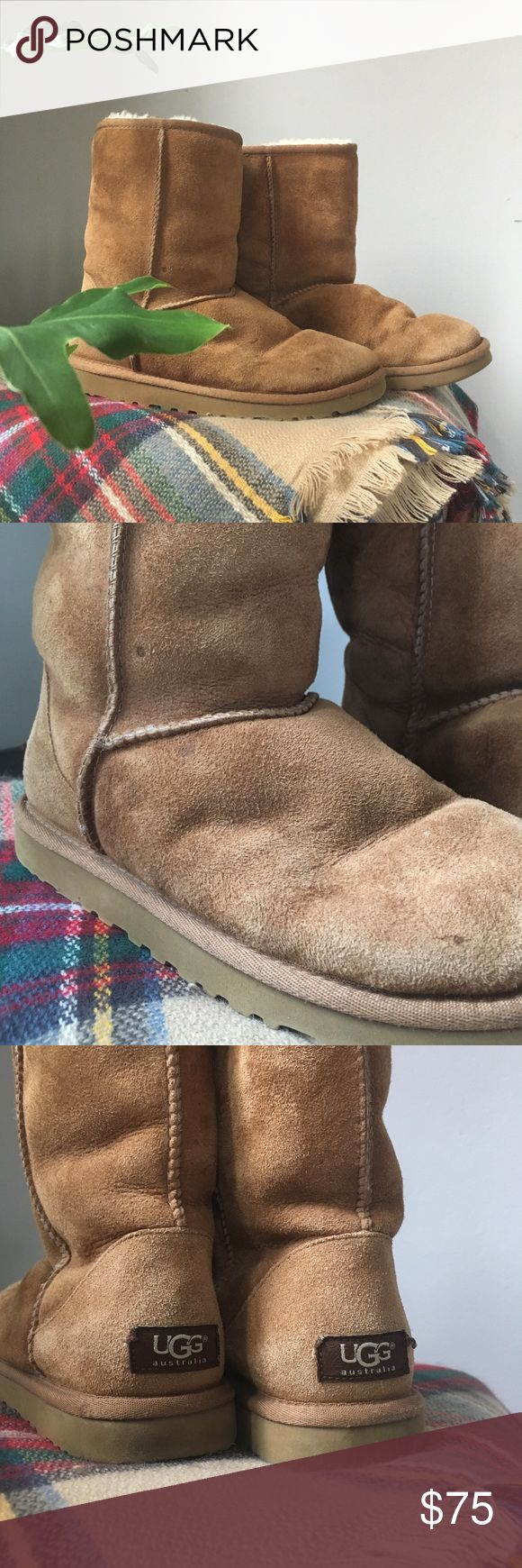 Ugg•Classic Short Genuine Shearling Boots Pre-loved Uggs in good used condition. Very minor wear on the suede. Be sure to scotch guard these to prevent future damage. Can be worn folded over. Lining is clean & odor free. USA 6 EU 37 Classic Chestnut color. UGG Shoes Winter & Rain Boots