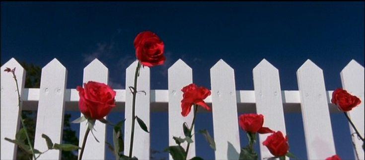 white picket fence movie 1