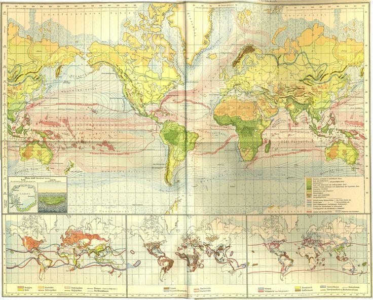 Andrees Handatlas 1922 8 Maailma kasvit