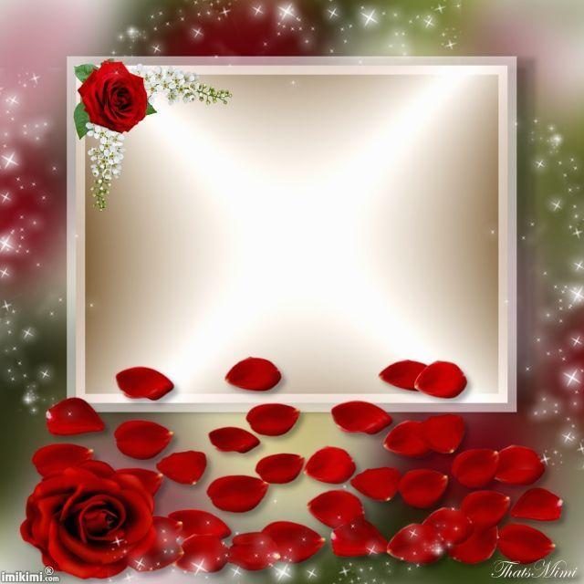 https://www.google.com/search?q=IMIKIMI FRAMES | BEAUTIFUL ROSE ...