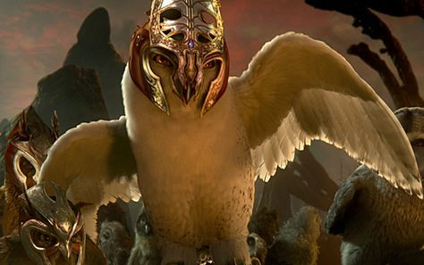 legend of the guardians owl images | Legend of the Guardians: The Owls of Ga'Hoole Stills